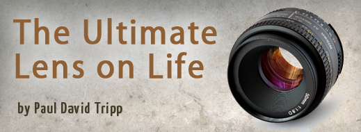 Ultimate Lens on Life