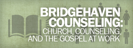 Models of Care in the Biblical Counseling World - Bridgehaven Counseling