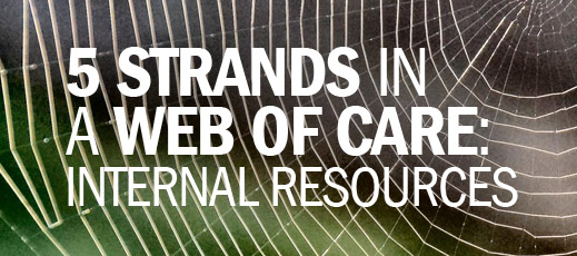 5 Strands in a Web of Care--Internal Resources